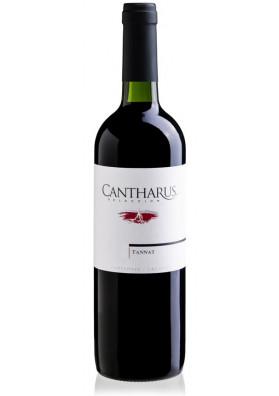Cantharus Seleccion Tannat 750 ml